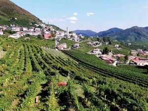 Prosecco Weinstr 3