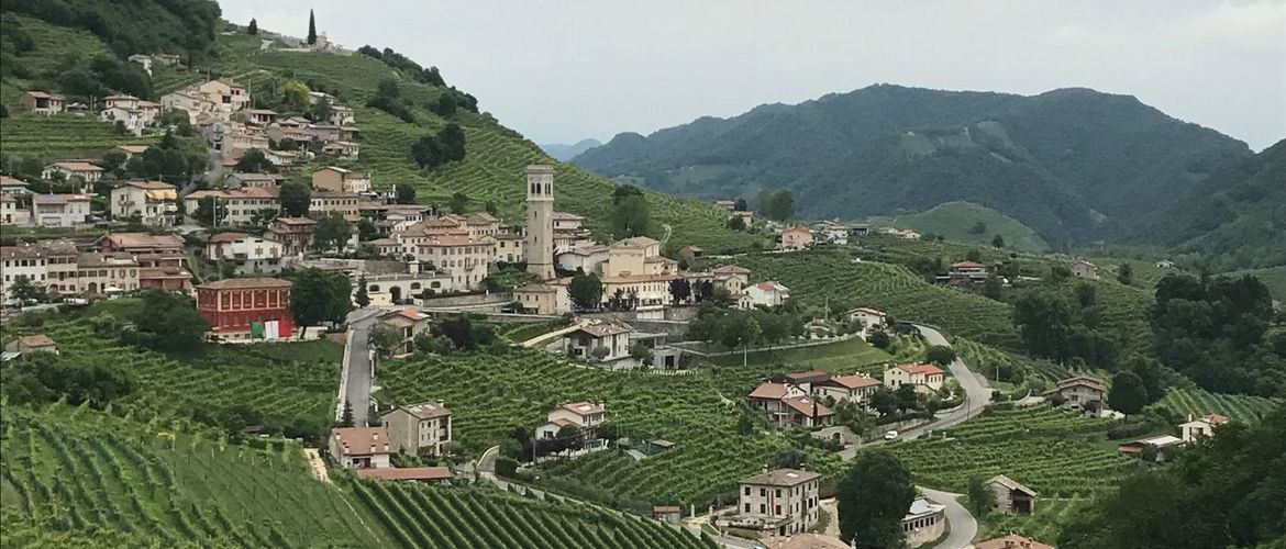 Prosecco Weinstr IMG 7874